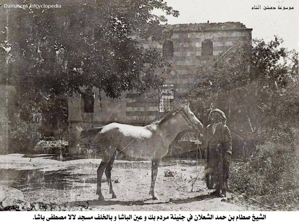 الشيخ صطام بن حمد الشعلان