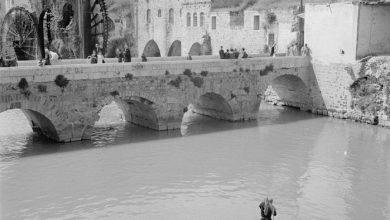 حماة عام 1950