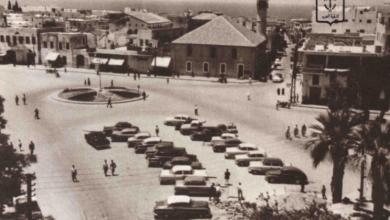 إحصائيات وأرقام - محافظة اللاذقية