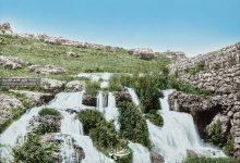 صورة صورة نادرة جدا من قرية بيت جن 1894