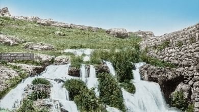 صورة صورة نادرة جدا من قرية بيت جن سنة
