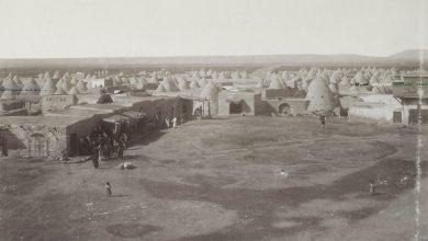 صورة مدينة السلمية 1890