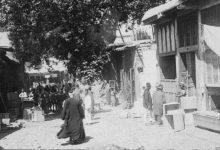 صورة دمشق 1911 – شجرة الدلب الضخمة في سوق السروجية