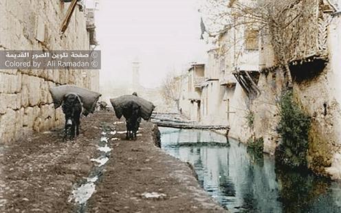 صورة نهر بردى – الجهة الغربية باب توما – دمشق ١٩١١