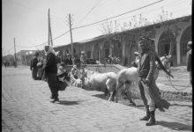 صورة حمص : شارع السراي ( القوتلي) في بدايات القرن الماضي..