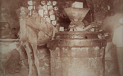 معصرة زيتون في دمشق 1910