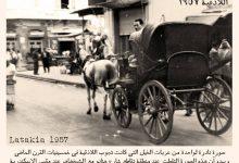 صورة عربات الخيل التي كانت تجوب اللاذقية في خمسينيات القرن الماضي