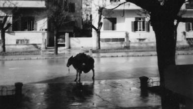 صورة دمشق – شارع فؤاد الأول (29 أيار) في شتاء الخمسينيات