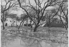 صورة بستان المجتهد – مكانه مشفى المجتهد حالياً – أراضي الحيواطية