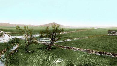 صورة منظر عام للكسوة – جنوبدمشق– عام 1918