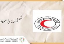 صورة المنظمات في سورية