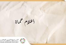 صورة أعلام حماة