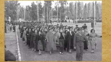 صورة أوضاع سورية قبيل الوحدة السورية – المصرية