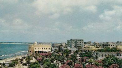اللاذقية 1970- حديقة البطرني والكازينو