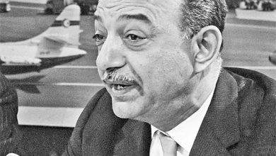 محمود رياض