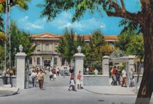 صورة عبد الكريم رافق … تاريخ الجامعة السورية من 1901 الى 1946