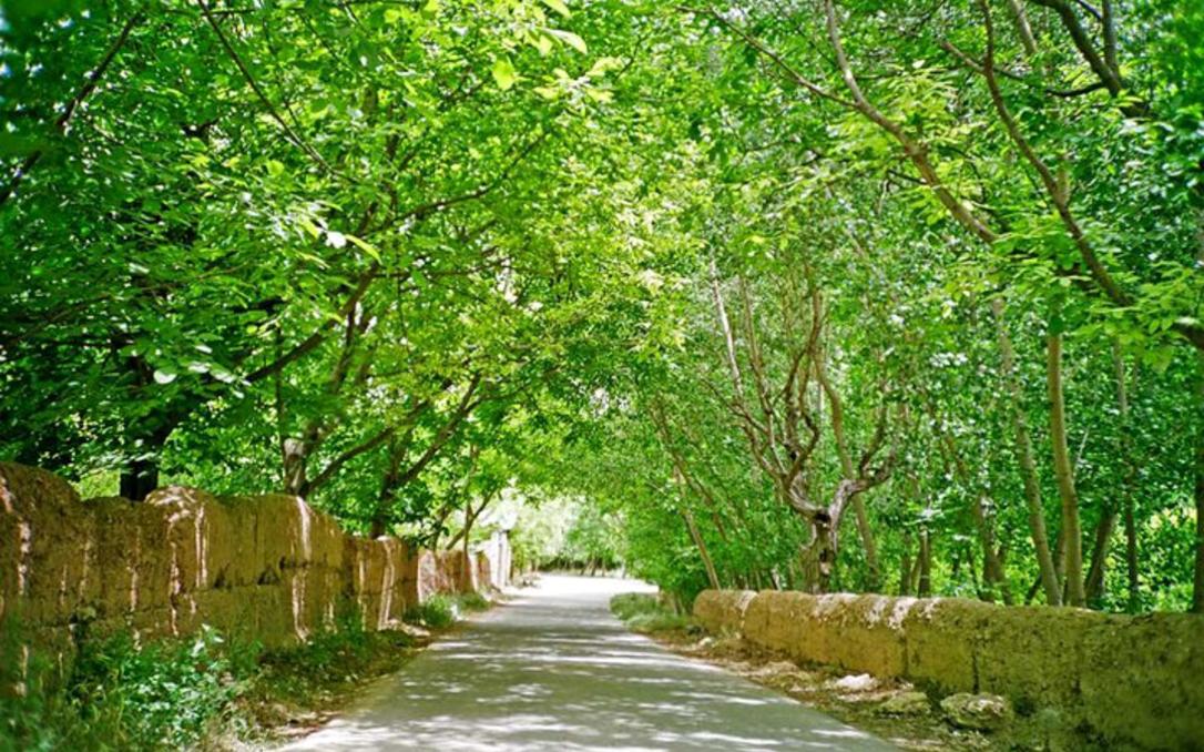 الغوطة الشرقية 1996 - بساتين جرمانا