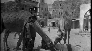 طرطوس 1941