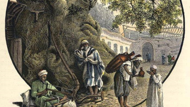 دمشق 1880- شجرة الدلب الضخمة في السروجية