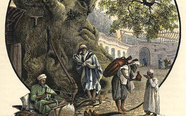 دمشق 1880- شجرة الدلب الضخمة في السروجية (1)