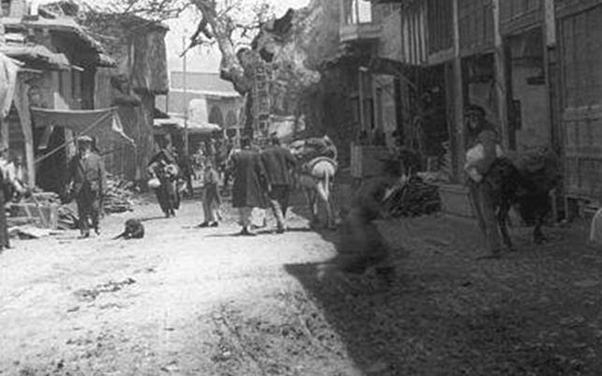 دمشق 1911  – شجرة الدلب الضخمة في سوق السروجية (7)