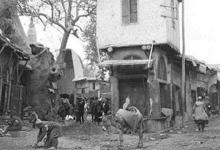 دمشق 1911 – شجرة الدلب الضخمة في سوق السروجية (6)