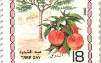 صورة طوابع سورية عام 2000 –  عيد الشجرة