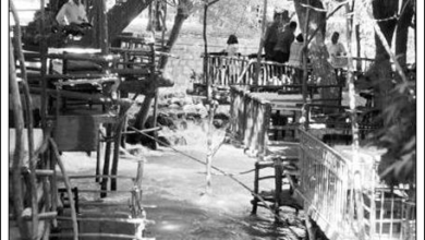 مقاهي عين الفيجة عام 1963