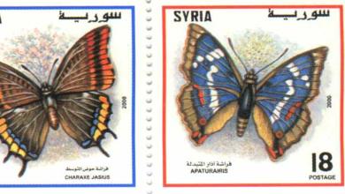 صورة طوابع سورية عام 2000 – الفراشات