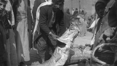 دير الزور 1929 - بيع السمك الفراتي