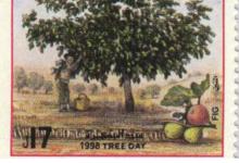 صورة طوابع سورية 1999 – عيد الشجرة