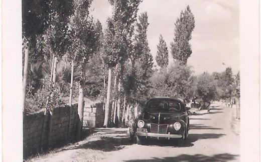 اللاذقية - طريق صلنفة في الخمسينيات