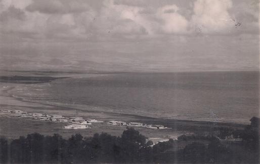 صورة اللاذقية – الرمل الجنوبي في خمسينيات القرن العشرين