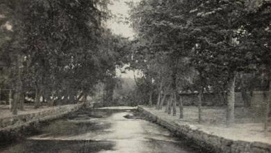 دمشق - حدائق الصفوانية عام 1905