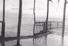 صورة اللاذقية -مشهد في الخمسينات
