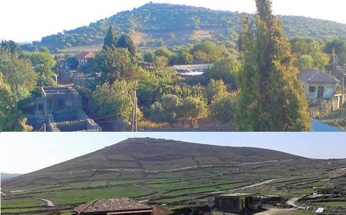 د. عادل عبدالسلام (لاش): تدهور الغطاء النباتي (النبيت) السوري، والتعفيش البيئي