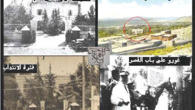 صورة تاريخ القصر الجمهوري في المهاجرين