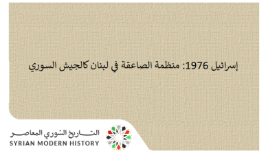 صورة إسرائيل 1976: منظمة الصاعقة كالجيش السوري والمهم الوضع على الحدود اللبنانية