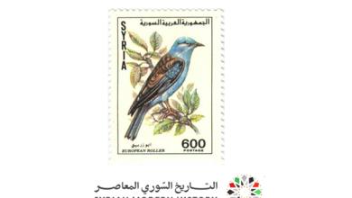 صورة طوابع سورية 1991  – الطيور