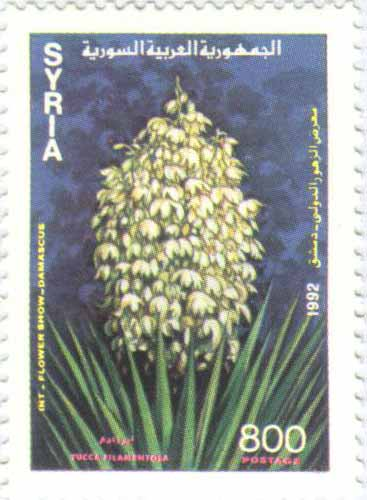 طوابع سورية 1992 -معرض الزهور الدولي