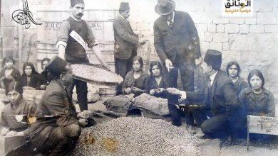 صورة تجفيف الفستق الحلبي وتمليحه قبل عملية التصدير عام 1917م
