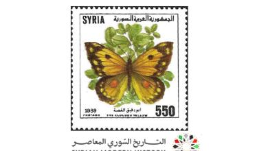 صورة طوابع سورية 1989- الفراشات
