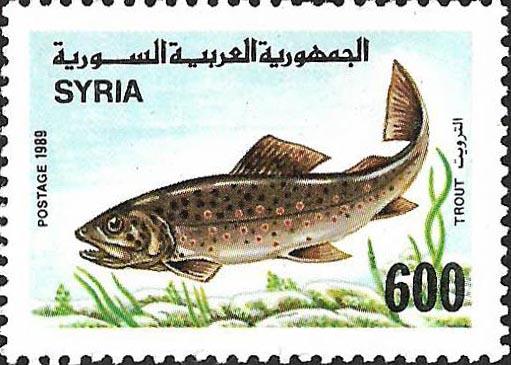 طوابع سورية 1989- الأسماك